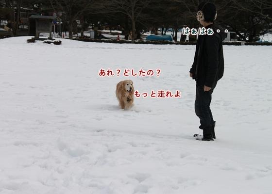 IMG_6937_R.jpg