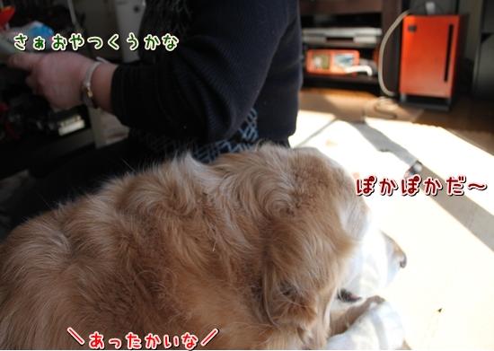 IMG_7220_R.jpg