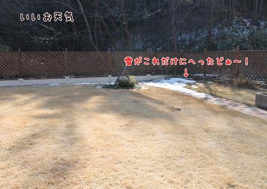 IMG_7299_R.jpg