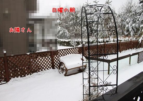 IMG_7344_R.jpg