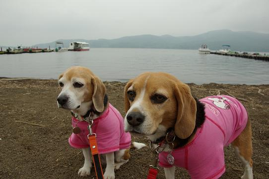 110610-29cookychara in lake of yamanaka