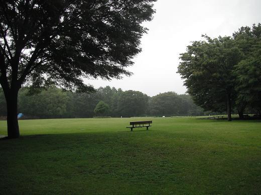 110611-07sagamihara park view