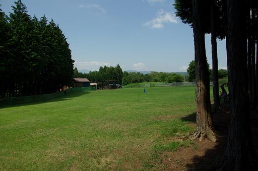 110716run view