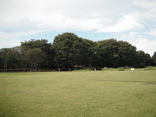 110718-11shibafu hiroba view