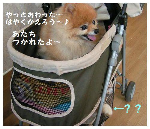 帰ろう~♪
