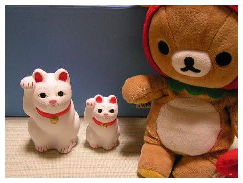 招福猫児さんたち