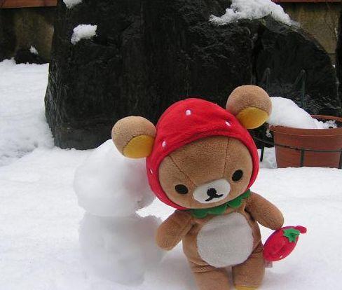 雪だるまと♪