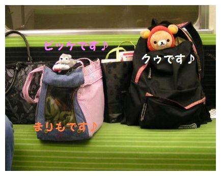 京都の地下鉄~♪
