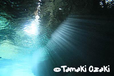 尾崎たまき、タオ島、洞窟