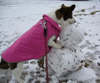 雪だるまと