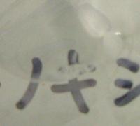 フェノキシエタノール4