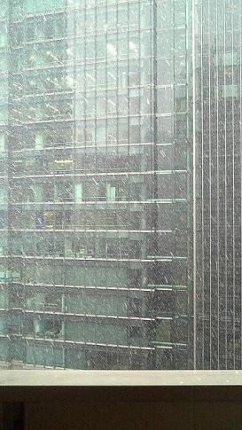 1/23東京で見る雪はこれが最初