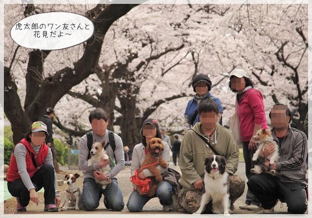虎太郎の春01