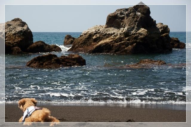 秘密の浜09