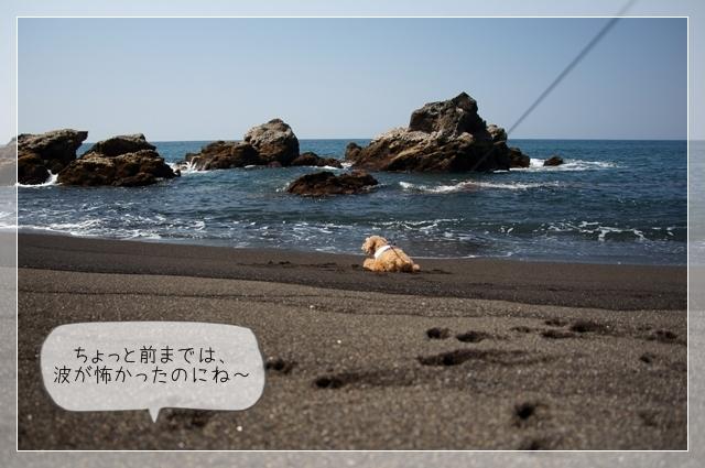 秘密の浜07