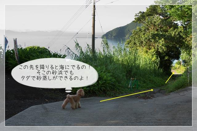 梅雨散歩14