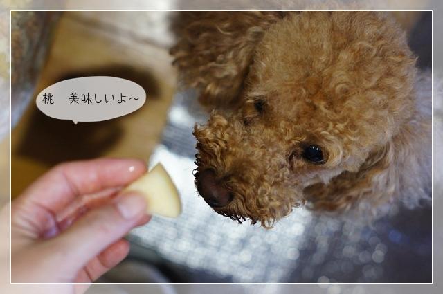 麺三郎05