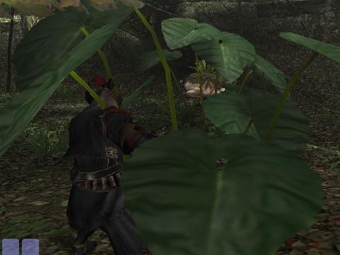 密林で狩猟・・・略して