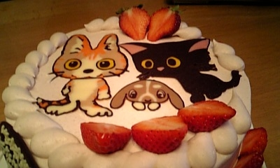 rkctck cake