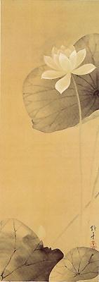 白蓮図(酒井抱一)