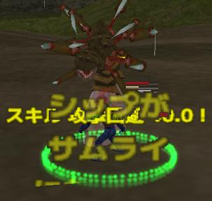 20111128210611.jpg