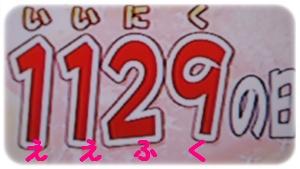 11-1129-10.jpg