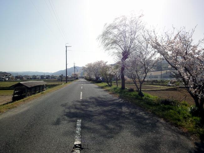 photo001-092.jpg