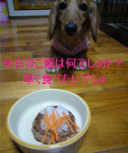 豆腐ハンバーグ2