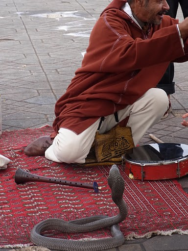2010.11.17-27 paris,morocco 124