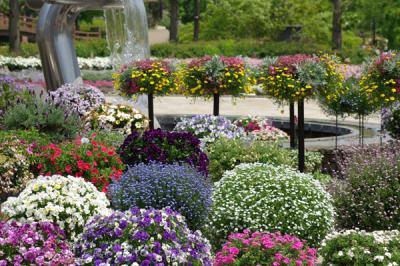 水生植物公園みずの森