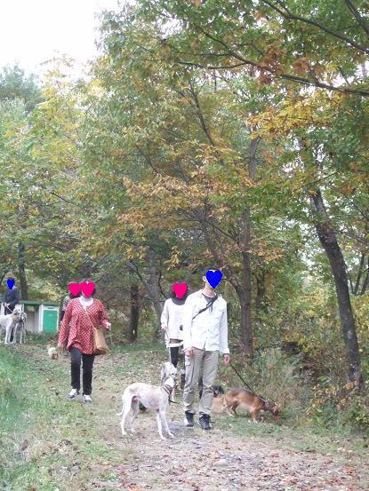 秋の味覚15