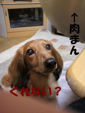 ちるちょい2