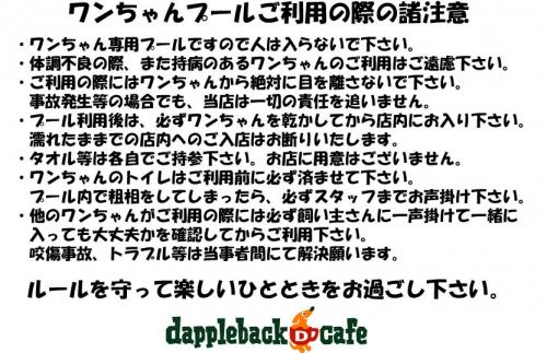 プール注意事項_convert_20130712202333