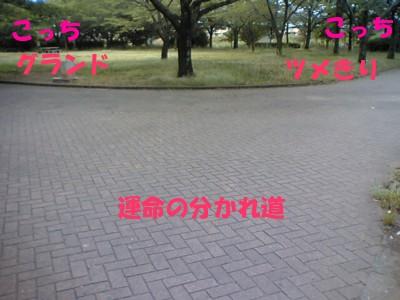 20070612230059.jpg