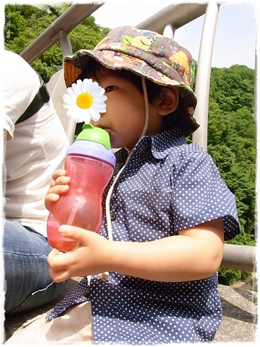 110525miyagase3.jpg