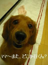 20071015_231156751.jpg