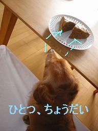 20071016_132147141.jpg
