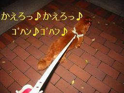 20071021_210758830.jpg