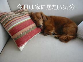 僕、眠いねん...