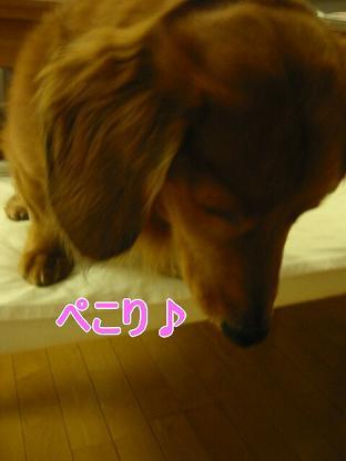 20080130_222934440.jpg