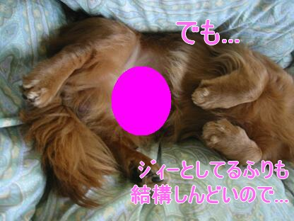 20080203_004421723.jpg