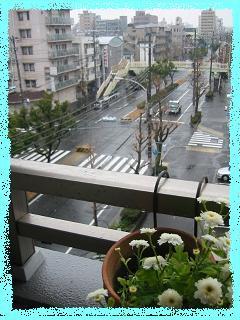 今日の天気...