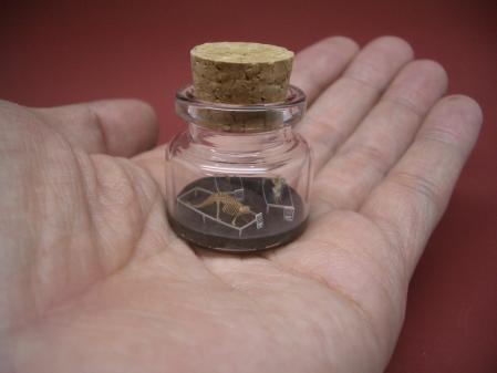 Tiny World in a Bottle_4