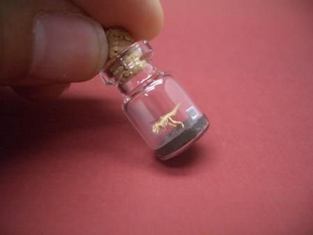 Tiny World in a Bottle_2