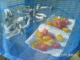 干し野菜。。。パスタ具材