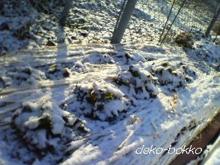 冬景色。。。2012.2.3