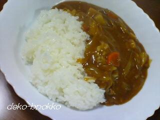 しらたきご飯+塩麹カレー