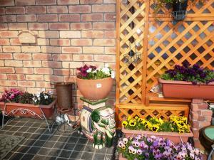 4花玄関前水栓側