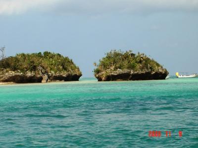 石垣島珊瑚スポット2