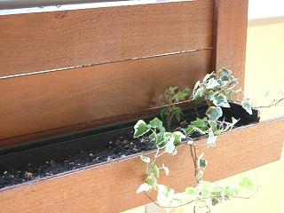 planter0330_10.jpg